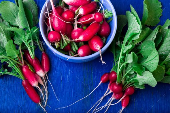 Fresh radish on blue background. - Stock Photo - Images