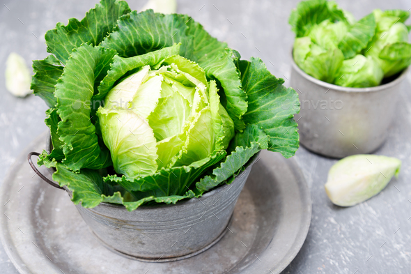 Fresh green cabbage in metal plate - Stock Photo - Images