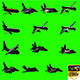Airplanes America Pack 13 In 1 - VideoHive Item for Sale