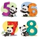 Vector Set of Baby Panda Bears with Numbers - GraphicRiver Item for Sale