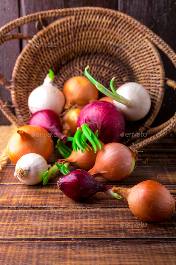 Different onions in basket - Stock Photo - Images
