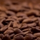 Roasted Coffee Beans Dropping - VideoHive Item for Sale