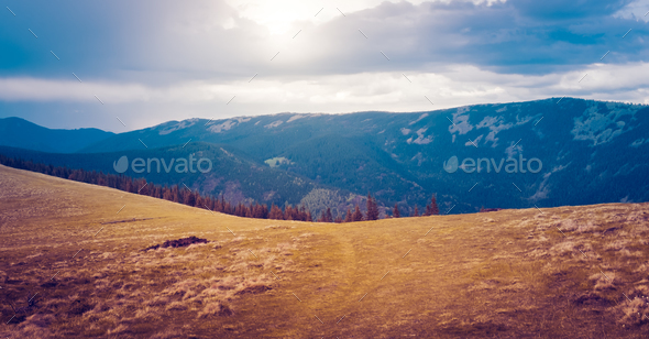 Mountain landscape with forest and blue sky - Stock Photo - Images
