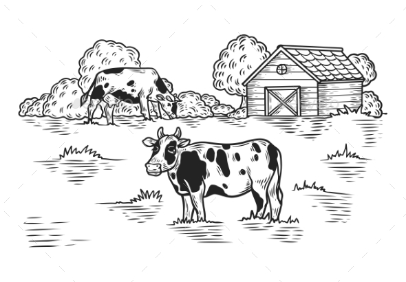 Cow at Meadow - Animals Characters