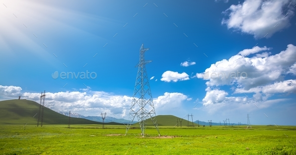 Green meadow and blue sky - Stock Photo - Images