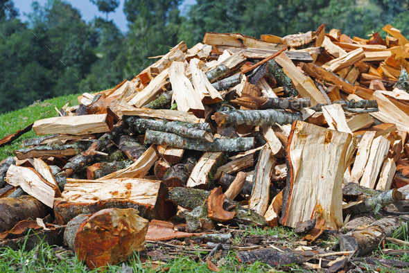 Firewood Pile For Winter - Stock Photo - Images