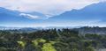 Mexico Jungle Landscape - PhotoDune Item for Sale