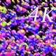 Bright Lap 4K 04 - VideoHive Item for Sale