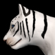 Female White Tiger Walk  - VideoHive Item for Sale