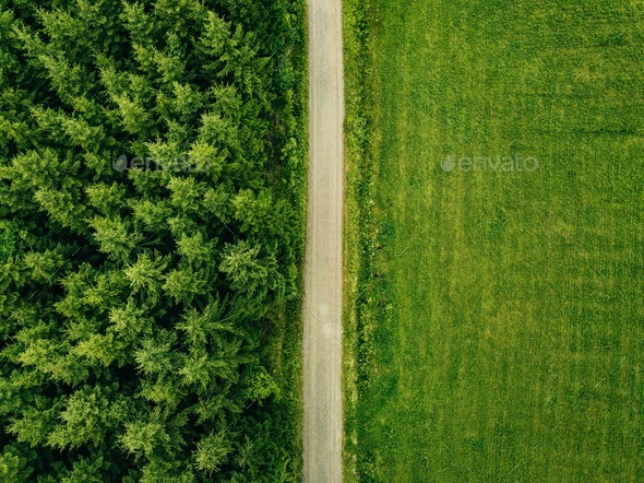 Grass field aerial Short Grass Aerial Top View Of Country Road Through Fir Forest And Green Field In Photodune Aerial Top View Of Country Road Through Fir Forest And Green