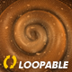 Snail - Crawling Loop - Right View - VideoHive Item for Sale