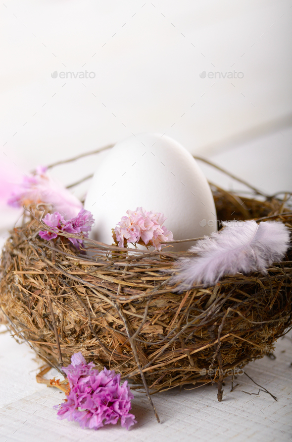 Egg in the nest with pink flowers and feather on white table - Stock Photo - Images