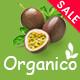 Organico - Fresh Fruits Responsive WooCommerce WordPress Theme - ThemeForest Item for Sale