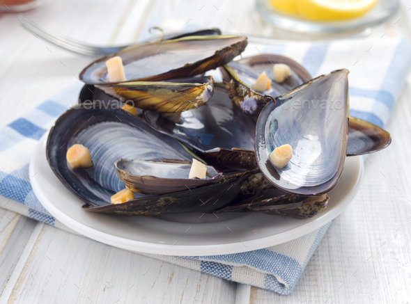 empty mussel shells on the table after lunch - Stock Photo - Images