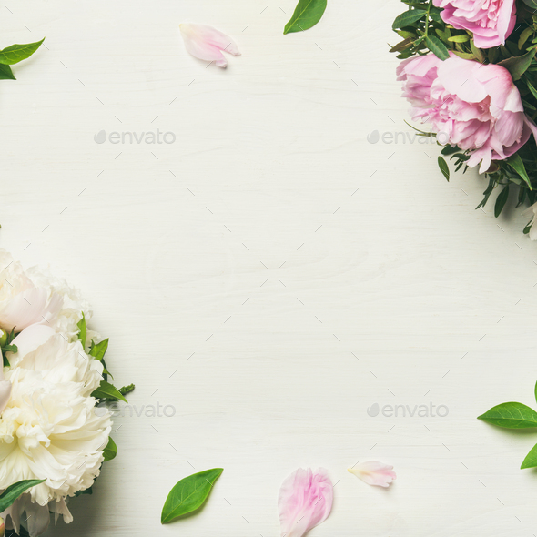 Flat-lay of peony flowers over white background, copy space - Stock Photo - Images