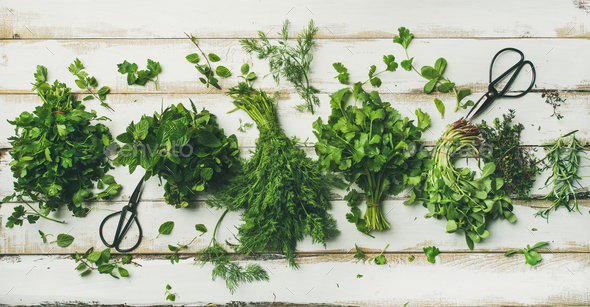 Various fresh green kitchen herbs - Stock Photo - Images