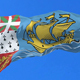 Saint Pierre and Miquelon Flag - VideoHive Item for Sale