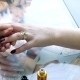 Manicure. Master Applies Varnish Drawing on Nails Gel in Spa - VideoHive Item for Sale