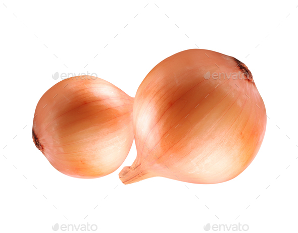 Onion isolated on white background - Stock Photo - Images
