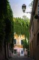 View of street inTrastevere - PhotoDune Item for Sale
