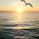 Wonderful sunset scene - PhotoDune Item for Sale