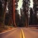 California Sierra Nevada Road - PhotoDune Item for Sale
