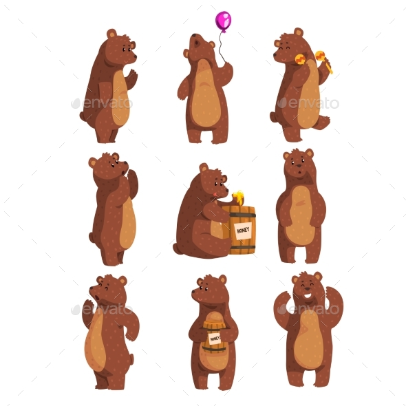 Forest Animal Bear Cartoon - Animals Characters