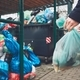 Full trash cans with rubbish bags - PhotoDune Item for Sale