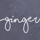 Ginger: A Modern Multi-Purpose Restaurant WordPress Theme - ThemeForest Item for Sale