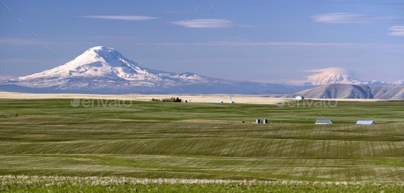 Oregon Agriculture Mt Rainier Mount Adams Cascade Range - Stock Photo - Images