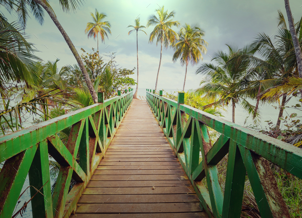 Boardwalk on the beach - Stock Photo - Images