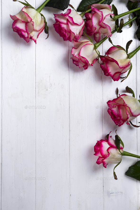 Roses Frame On Wooden White Background Stock Photo By Lyulkamazur