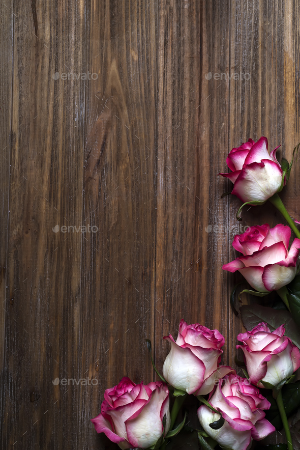 Roses frame on wooden brown background - Stock Photo - Images