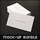 Elegant Business Card - Flyer Mock-ups Bundle - GraphicRiver Item for Sale