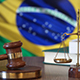 Justice for Brazil Laws in Brazilian Court - VideoHive Item for Sale