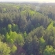 Beautiful Aerial View on Forest from Above - VideoHive Item for Sale