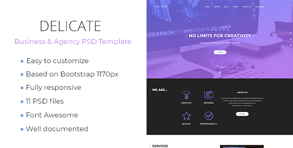 Delicate - Multipurpose Agency & Business Template - PSD Templates