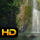 Tropical Waterfall in Jungle - VideoHive Item for Sale