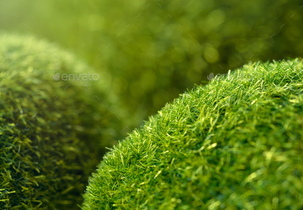 Green grass hills - Stock Photo - Images