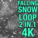 4K Falling Snow V2 Pack 2 in 1 - VideoHive Item for Sale