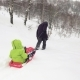 Winter Behind Follow Father Pulling Red Bobsled on Snowy Field with child. Dad, Son or Daughter - VideoHive Item for Sale