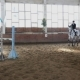 Horse Girl Rider Jump Over Obstacle in - VideoHive Item for Sale
