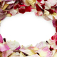 frame of homemade dried rose petals - PhotoDune Item for Sale