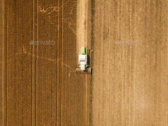 Aerial view of combine harvester harevsting wheat - Stock Photo - Images