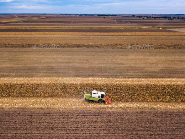 Aerial view of combine harvesting corn field - Stock Photo - Images