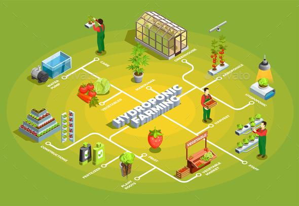 Hydroponic Farming Isometric Flowchart - Miscellaneous Conceptual