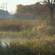 Morning Fog on the Lake, Sunrise Shot - VideoHive Item for Sale