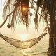 Hammock on Beach Hanging on Palm Tree for Relaxing During Summer Vacation - VideoHive Item for Sale