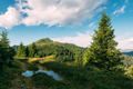 Picturesque summer landscape in sunny day - PhotoDune Item for Sale