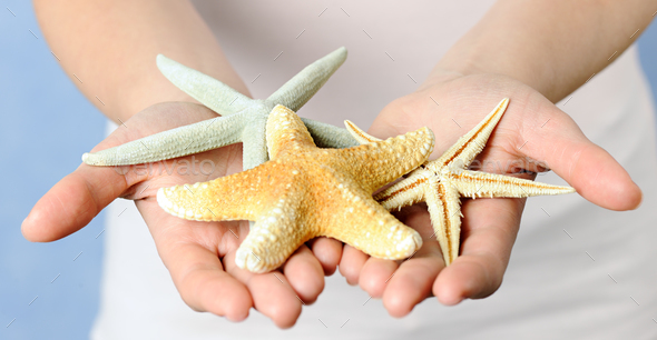 Hands with starfishes - Stock Photo - Images